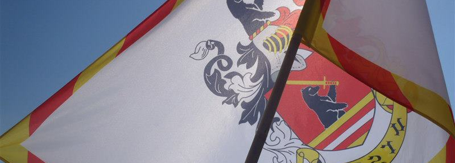 Skupina historického šermu URSUS - vlajka